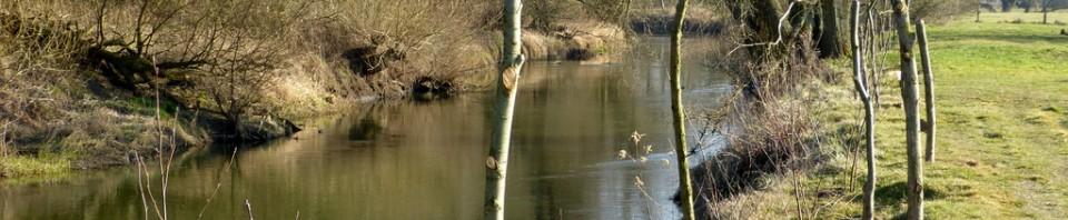 Gewässerschutz 2014: Okerdurchbruch verhindern