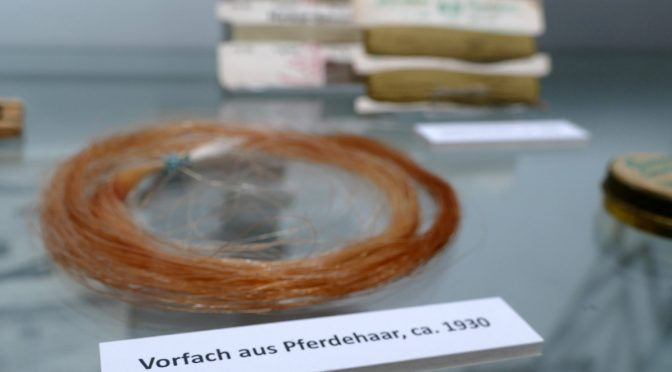 """Ausstellung: """"Von falschen Schlangen und Krokodilen – Lebensraum und (historische) Fangtechniken von Süßwasserfischen"""""""