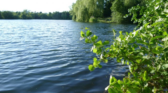06. April: Hillerser Angler stellen Maßnahmen des Naturschutzes vor